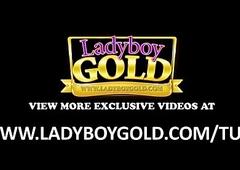 Leader Sheboy Chubby Dig up Sans a condom Orgy